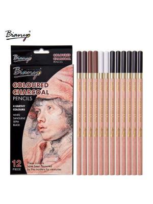 طقم ١٢ قلم فحم درجات Bianyo
