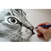 طقم ٣ قلم رصاص جرافيتي اكواريل   فرشه